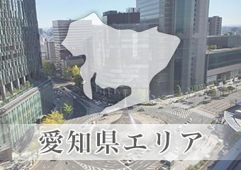 愛知県エリアのイメージ画像
